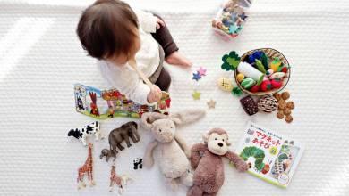 declutter-your-kids-toys-easily-teachworkoutlove.com