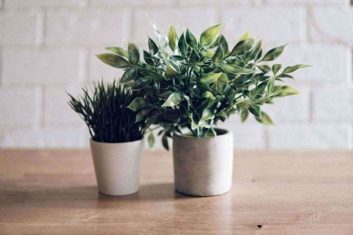 artificial-plants-teachworkoutlove.com