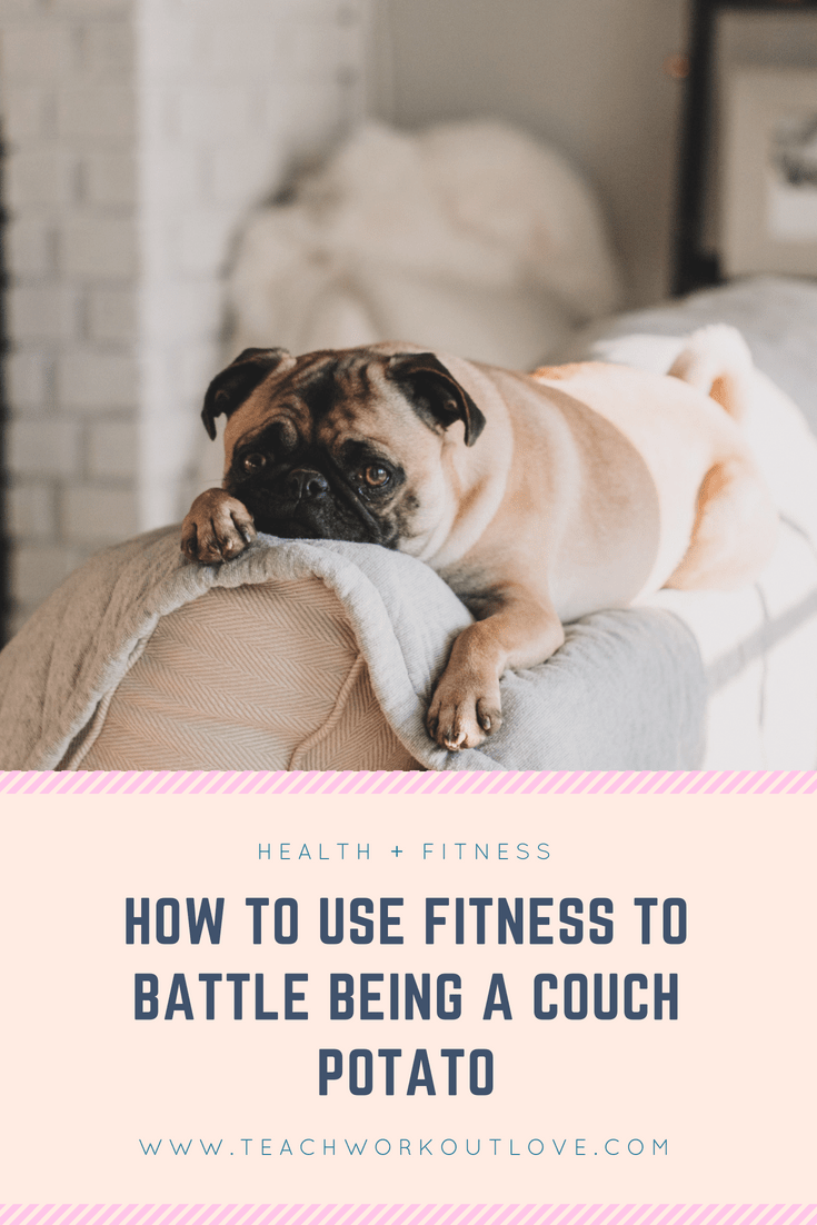 pug-couch-potato-teachworkoutlove.com