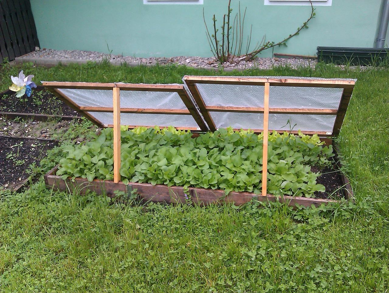 tips-for-spring-garden