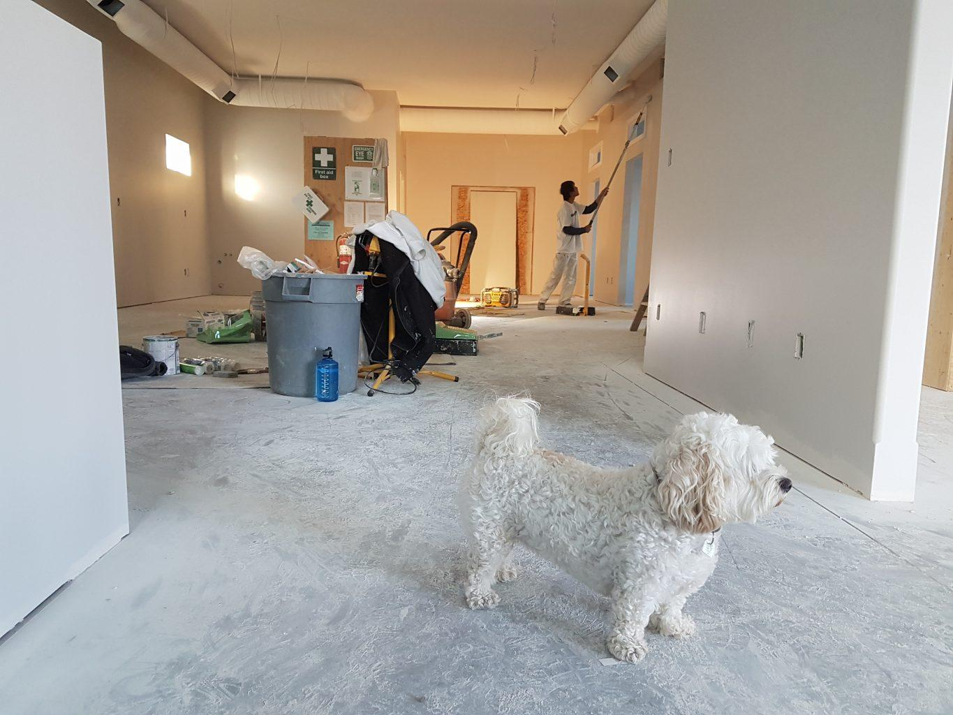 renovations-for-home-tips