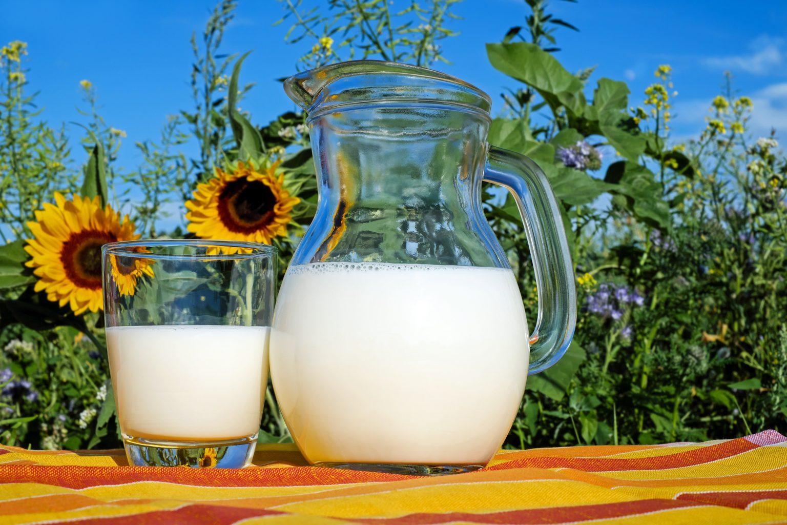 drink-milk-when-breastfeeding