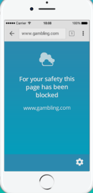 what it looks like when the website is blocked