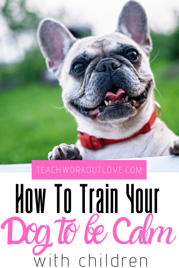 How-to-train-your-dog-to-be-calm-with-children-teachworkoutlove.com-TWL-Working-Moms