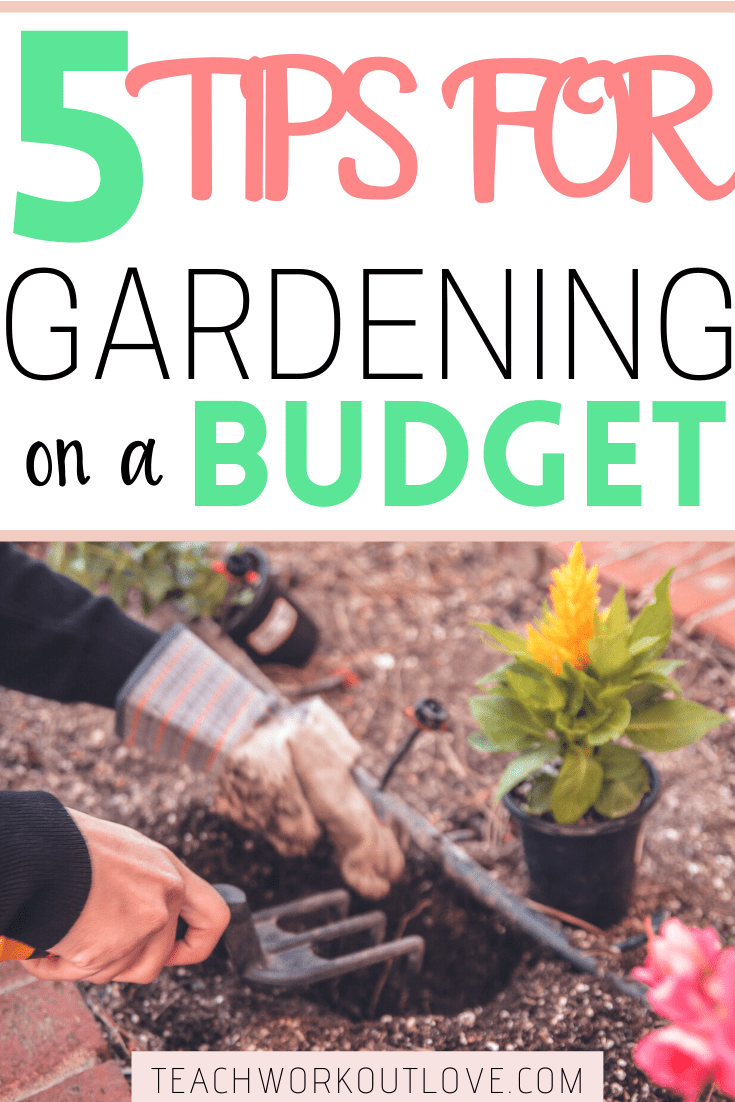Want to know how to turn a money-draining garden into a money-saving one? Read on if you want to learn more about gardening on a budget successfully!