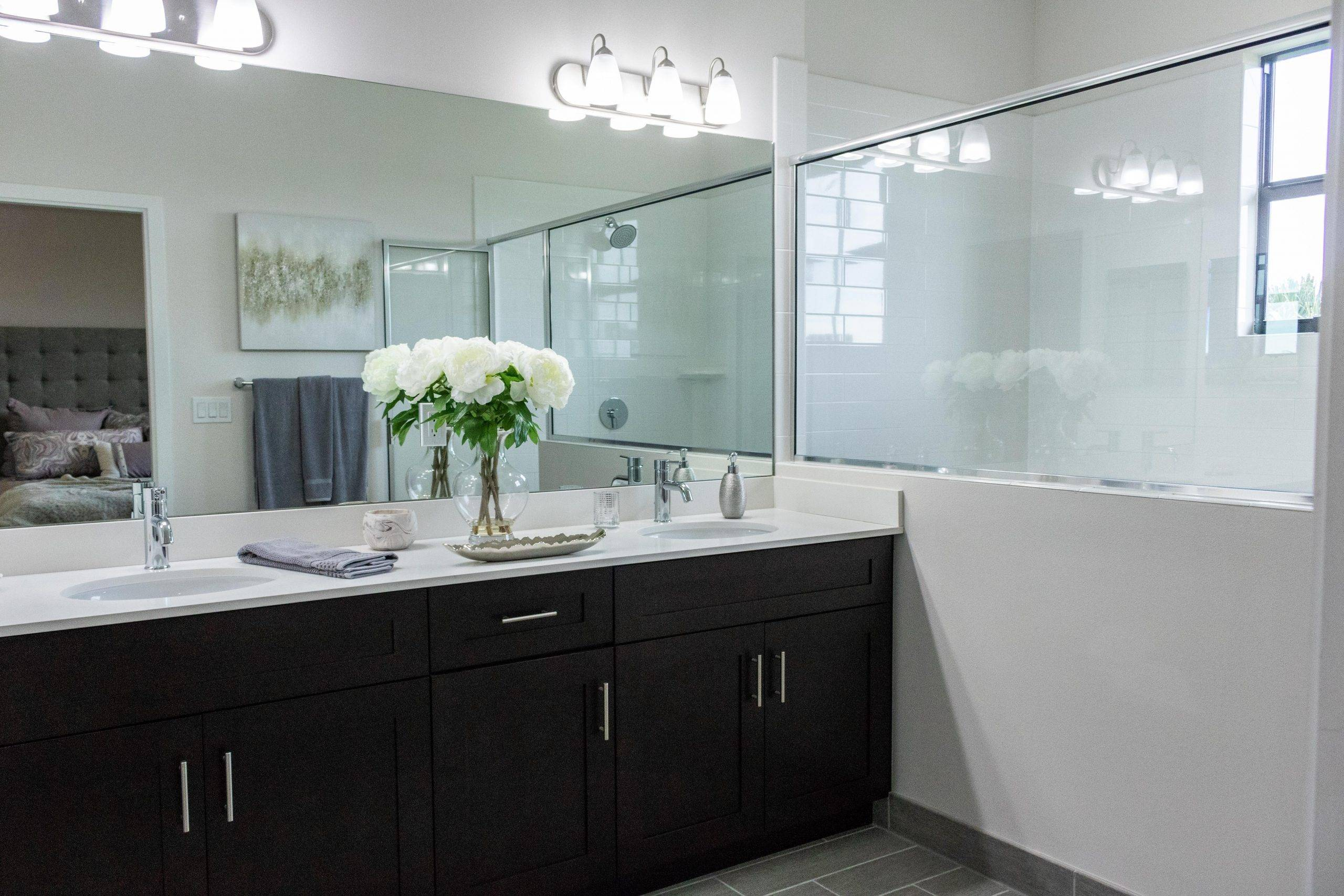cleaning the bathroom counters